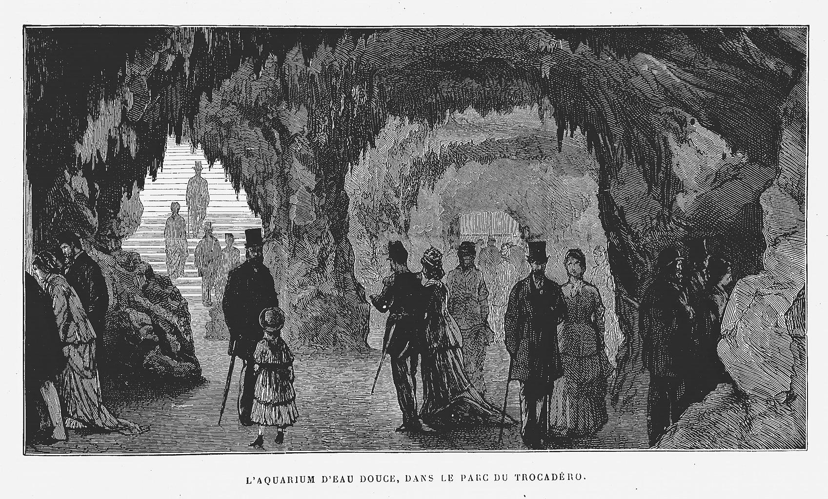 Trocadero aquarium paris international exposition of 1878 for Aquarium de paris jardin du trocadero